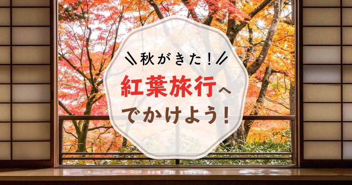 秋がきた!紅葉旅行へでかけよう!