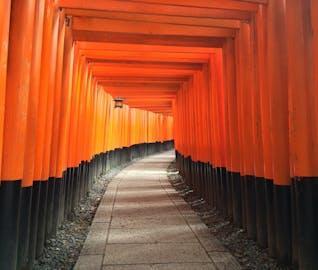 カメラの準備はOK!?カラフルな京都を巡る旅