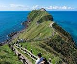 夏の積丹半島で「青い海」と「絶品ウニ」を満喫する旅