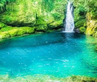 自然豊かな四万十・仁淀川をめぐり高知を満喫する旅
