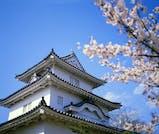 瀬戸内海と桜のハーモニーに魅了される、春の香川旅