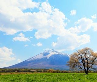 まだ雪の残る岩手で、春を感じる八幡平お花見旅