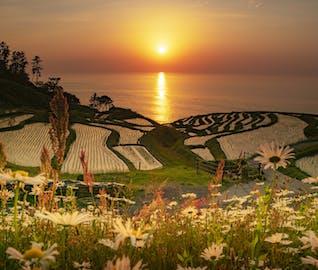 季節限定!夕日に染まる棚田と「3つの体験」を楽しむ能登・輪島旅