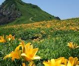 初夏にきらめく絶景を巡る、佐渡島まるごと満喫旅