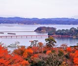 松島の絶景と、秋の味覚を堪能するグルメ旅